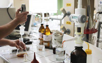 Univerzitní vinaři vyrábějí nejen víno